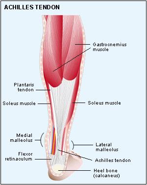 Achille-osteopatia