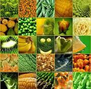 alimentazione enzimi