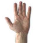 dolore mano osteopatia