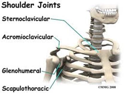 dolore spalla osteopatia