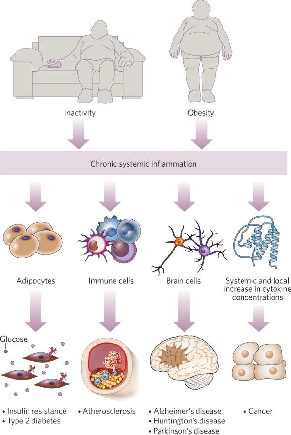 infiammazione cronica killer