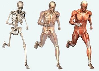 osteopatia corsa maratona 1