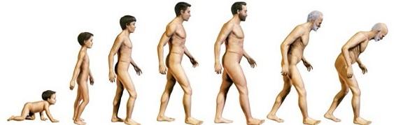 osteopatia postura 3