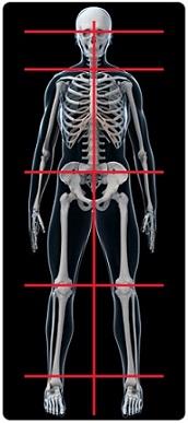 osteopatia-postura-bacino 1