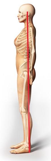 osteopatia postura corretta