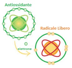 radicale libero antiossidante