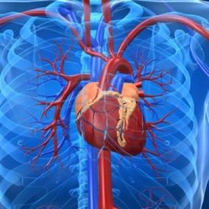 scompenso cardiaco osteopatia