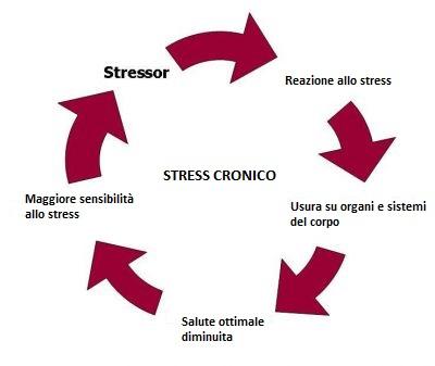 stress cronico stressor
