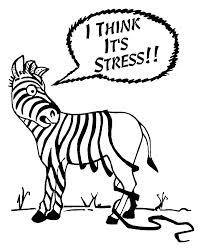 teoria allostasi stress