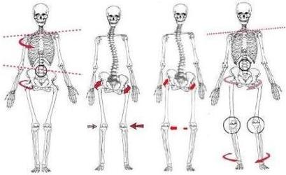 osteopatia postura